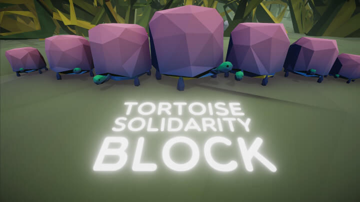Tortoise Solidarity Block
